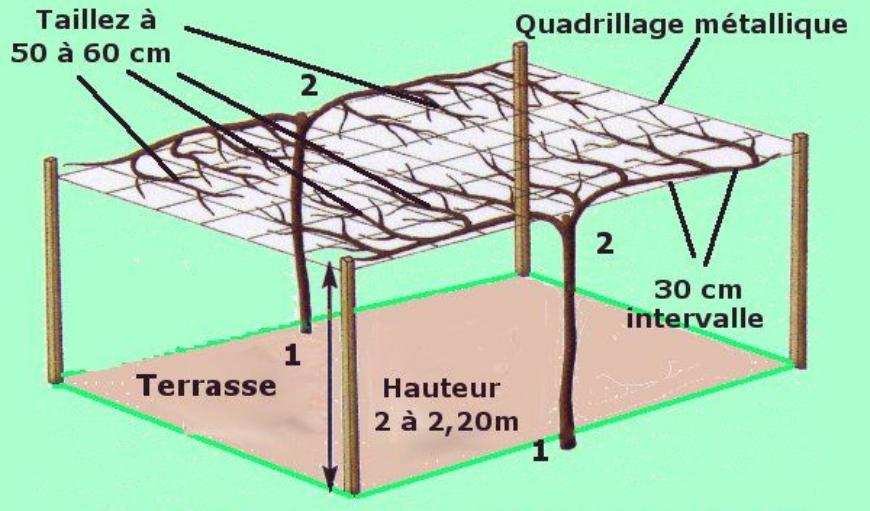 exemple de construction pergola